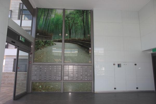 פרויקט חיפוי קיר זכוכית
