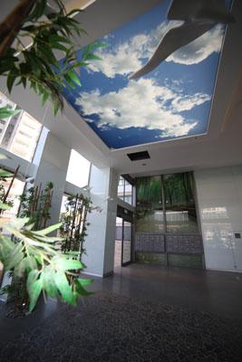פרויקט חיפוי קיר זכוכית 15